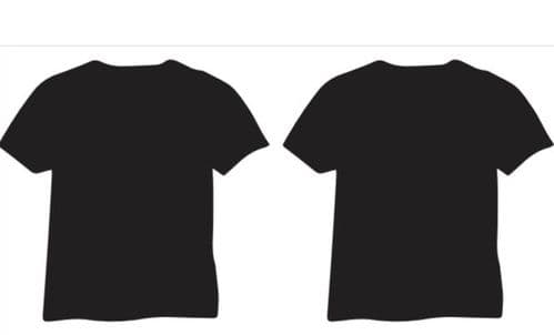 T. Shirt with logo (fruit of the Loom or Gilden soft style)