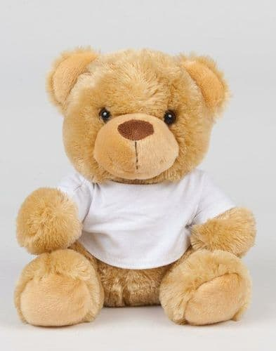 Teddy Bear with printed t. shirt