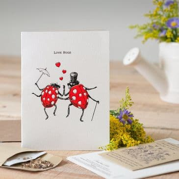 Gorgeously Different 'Love Bugs' Greeting Card with Packet of Wildflower Seeds