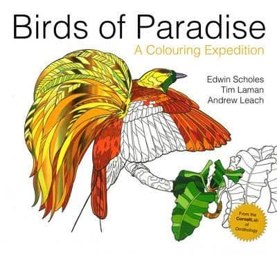 Birds Of Paradise; A Colouring Expedition