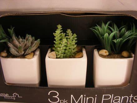 BNIB ARTIFICIAL GLOSSY POTS PLANTS SET OF 3