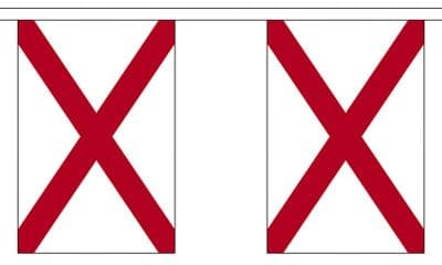ALABAMA (U.S. STATE) BUNTING - 3 METRES 10 FLAGS