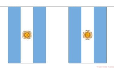 ARGENTINA BUNTING - 9 METRES 30 FLAGS