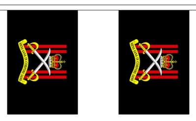 ARMY PHYSICAL TRAINING CORPS BUNTING - 9 METRES 30 FLAGS