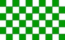 CHECKERED GREEN & WHITE - HAND WAVING FLAG (MEDIUM)
