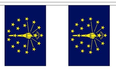 INDIANA (U.S. STATE) BUNTING - 3 METRES 10 FLAGS