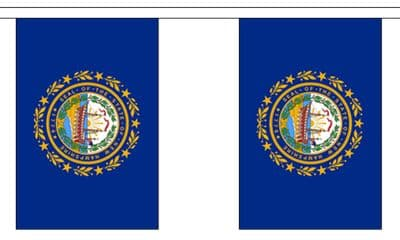 NEW HAMPSHIRE (U.S. STATE) BUNTING - 3 METRES 10 FLAGS