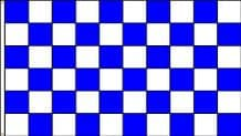 CHECKERED BLUE & WHITE - HAND WAVING FLAG (MEDIUM)