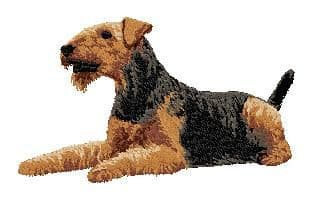 Airedale Terrier 2 (body)