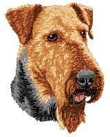 Airedale Terrier 3