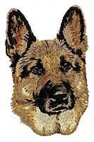 German Shepherd 23